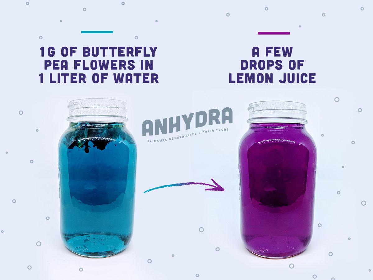 Butterfly pea flowers effect