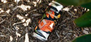 Bière L'Escapade - Collaboration avec Boréale